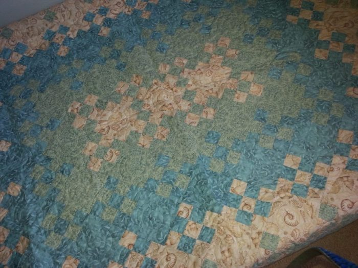 Debbie Clemmons Blooming Nine Patch Quilt